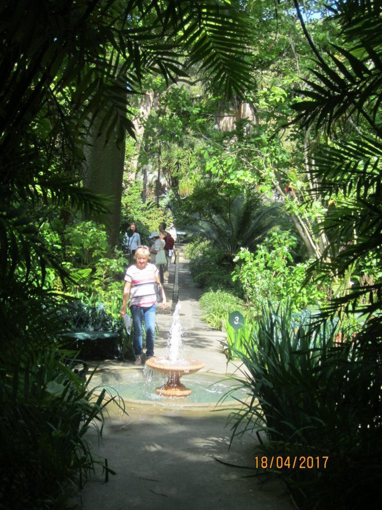 Сад Ла Мортелла. Начало экскурсии