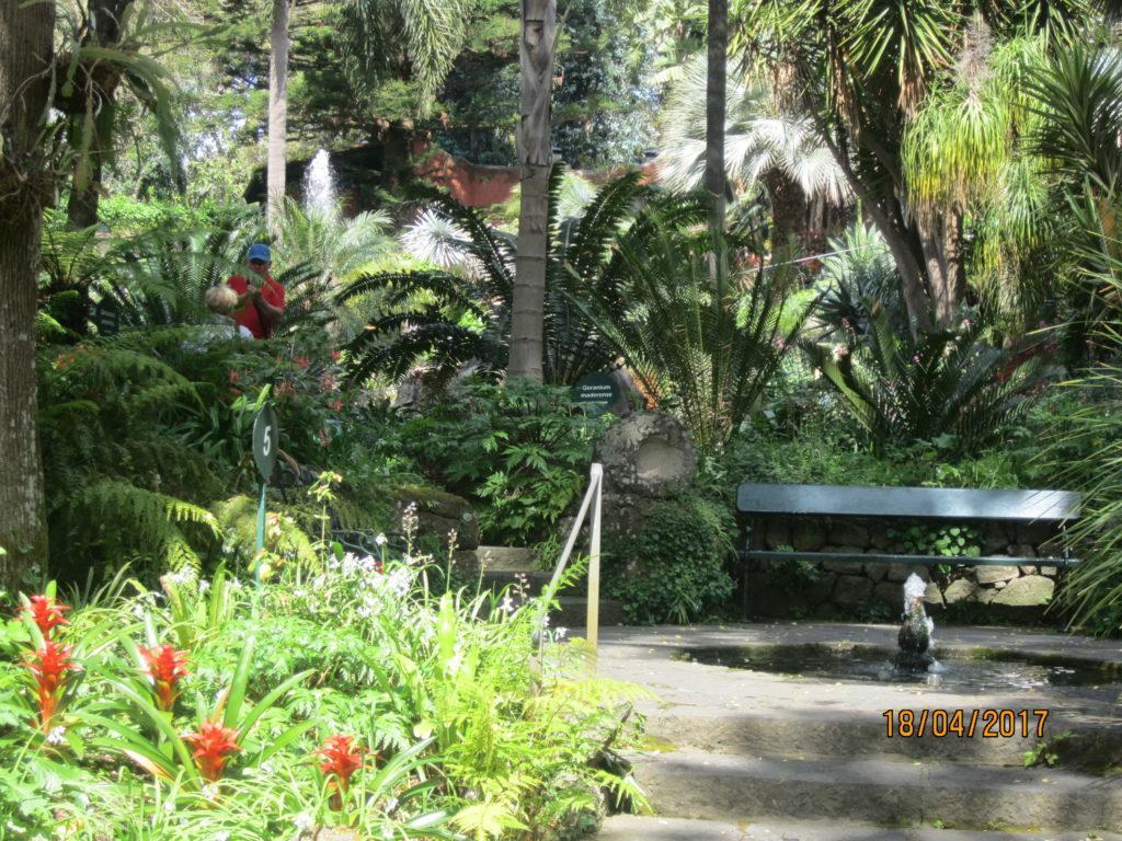 Сад Ла Мортелла. Другой фонтан.