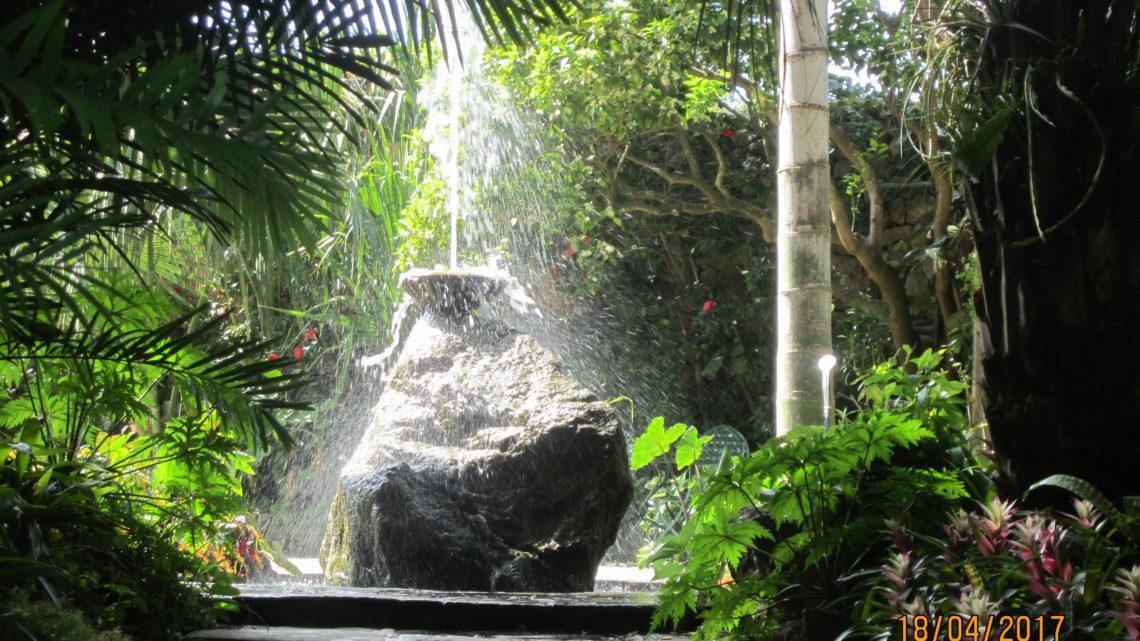 Остров Искья в апреле. Лакко Амено. Ботанический сад Ла Мортелла.