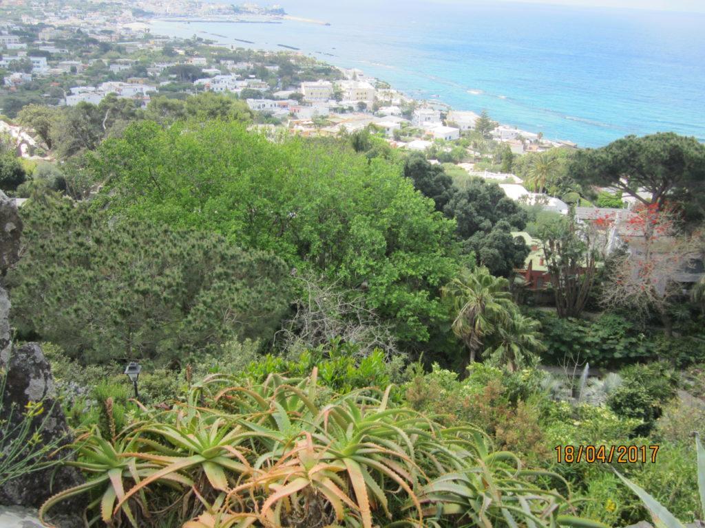 Сад Ла Мортелла. На верхней террасе.
