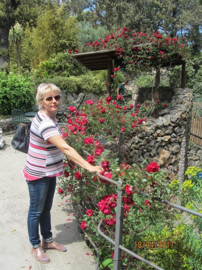 Сад Ла Мортелла.