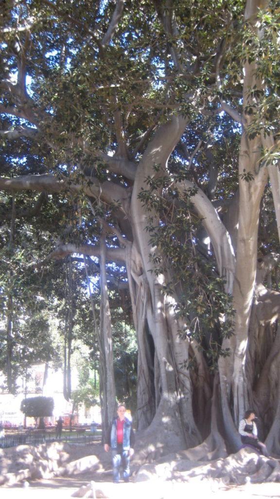 Сад Гарибальди на Piazza Marina.