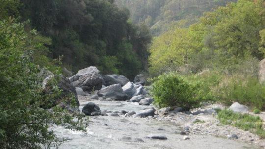 В сказочное ущелье Алькантара из Таормины.