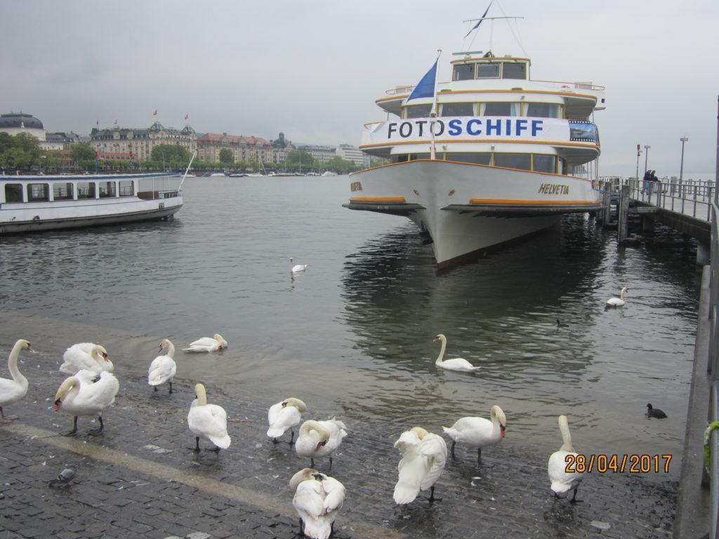 Цюрих. Озеро