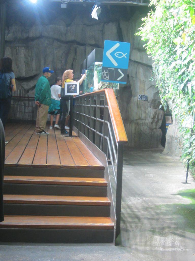 В аквариуме Генуи.