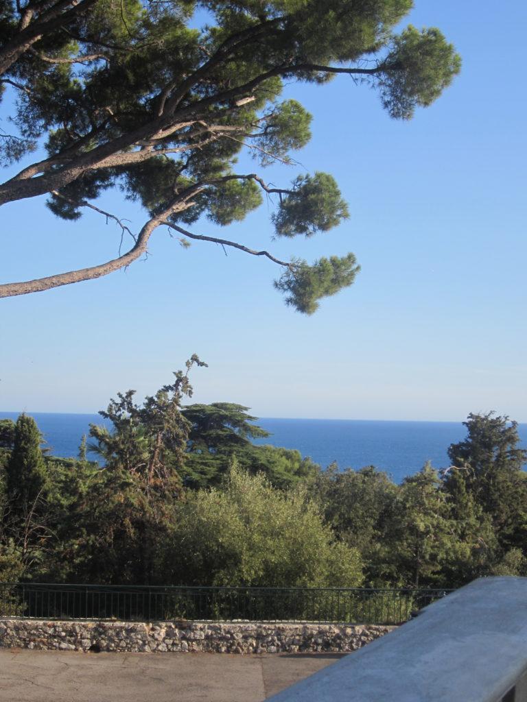 Вид с холма Шато