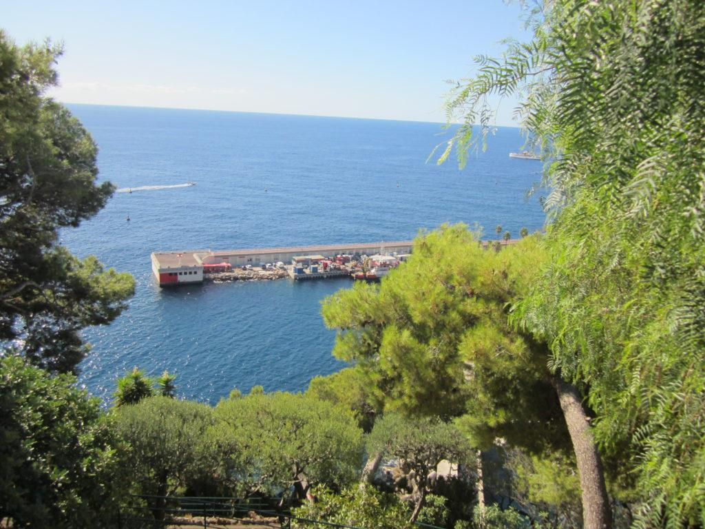 Monaco. Парк