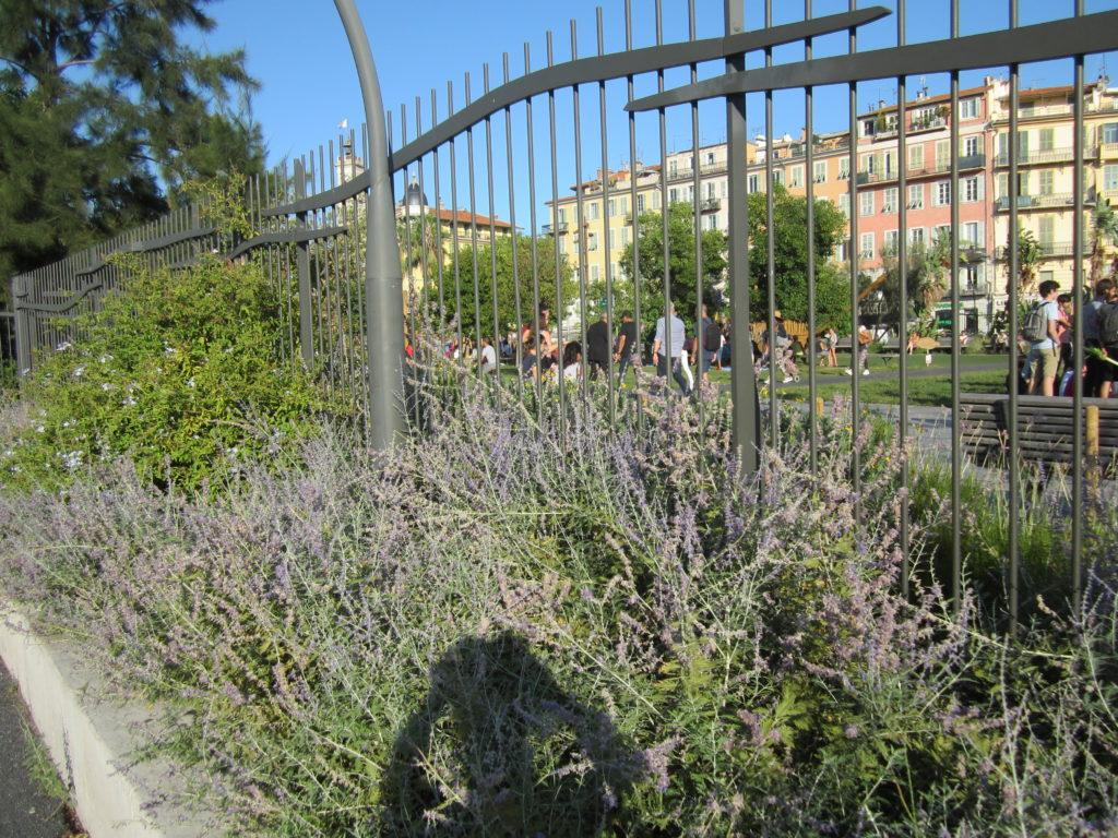 В детский парк Ниццы