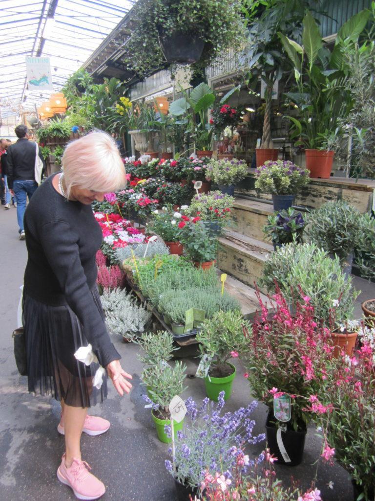 Цветочный рынок на острове Сите