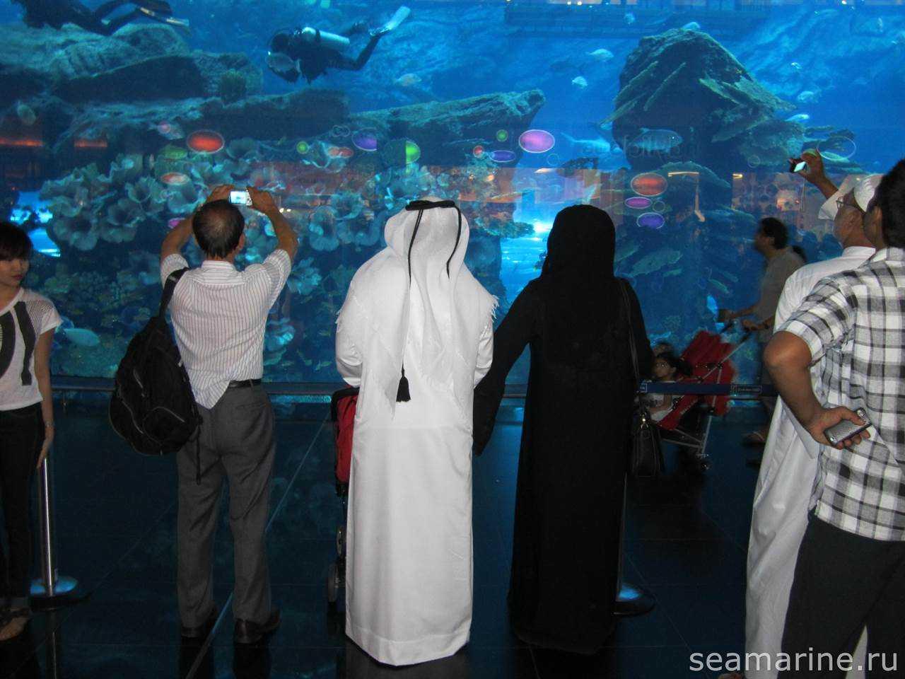Dubai Mall, Aquarium and Underwater Zoo
