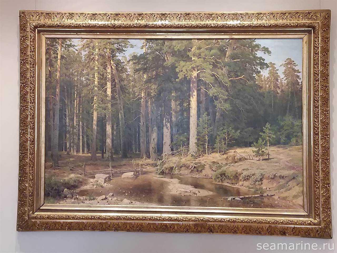 В Русском музее Санкт-Петербурга. Картина И.И. Шишкина